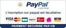 Logo PayPal 231x100